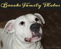Brooks-Family-Photos